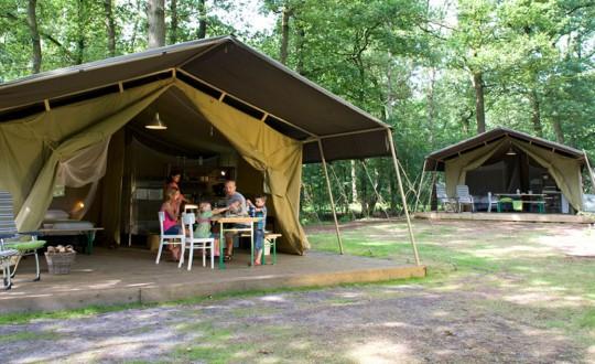 Starnbosch - Glamping.nl