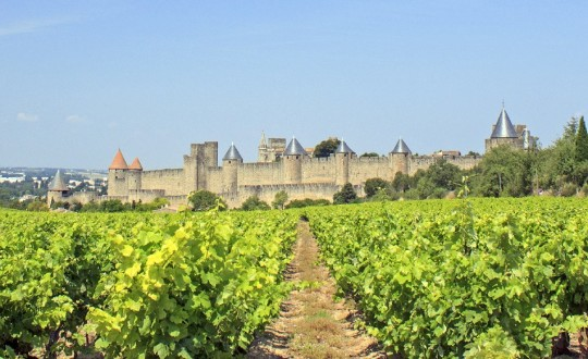 Glamping in de Languedoc-Roussillon