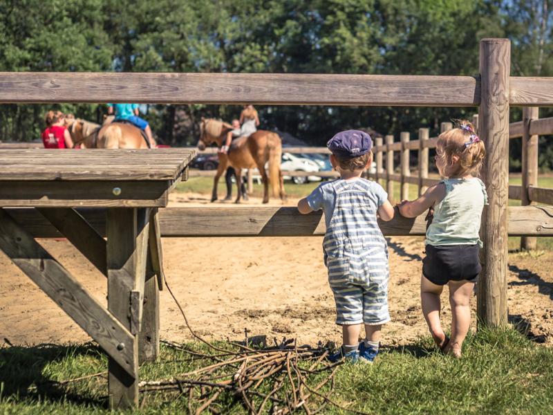Kinderen kijken naar ponyrijden - Glamping De Luttenberg
