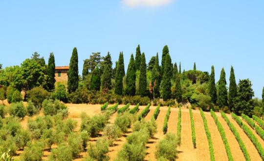Waarom je moet kiezen voor glamping in Toscane