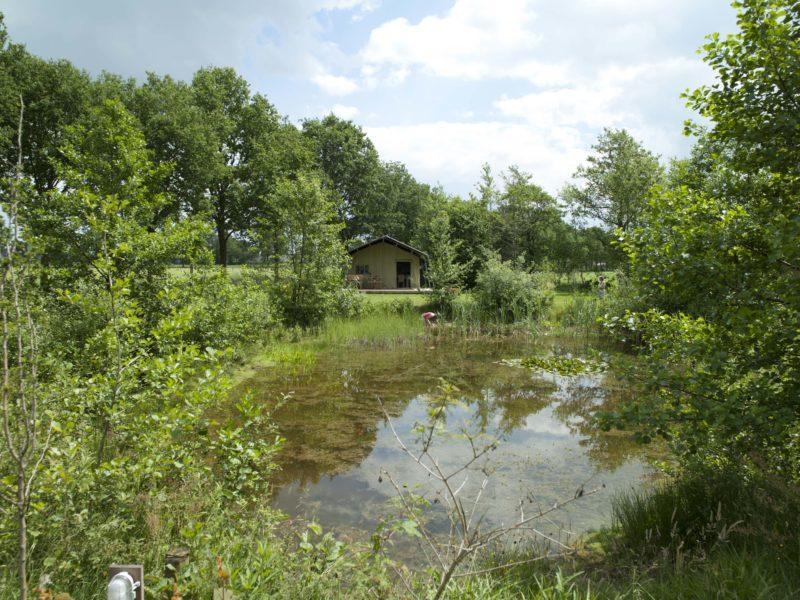 Uylkenshof omgeving meer