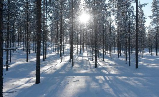 Glamping Finland