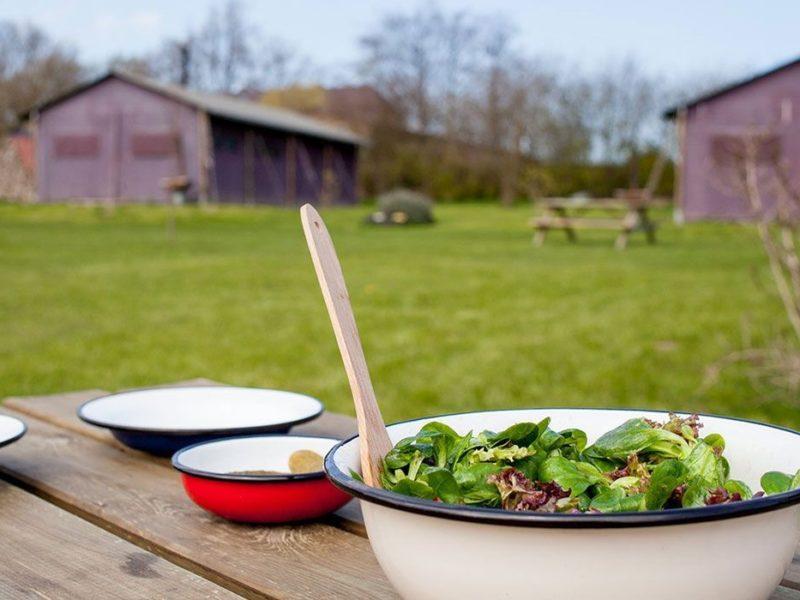 Dinserhof Collection, salade uit eigen tuin.