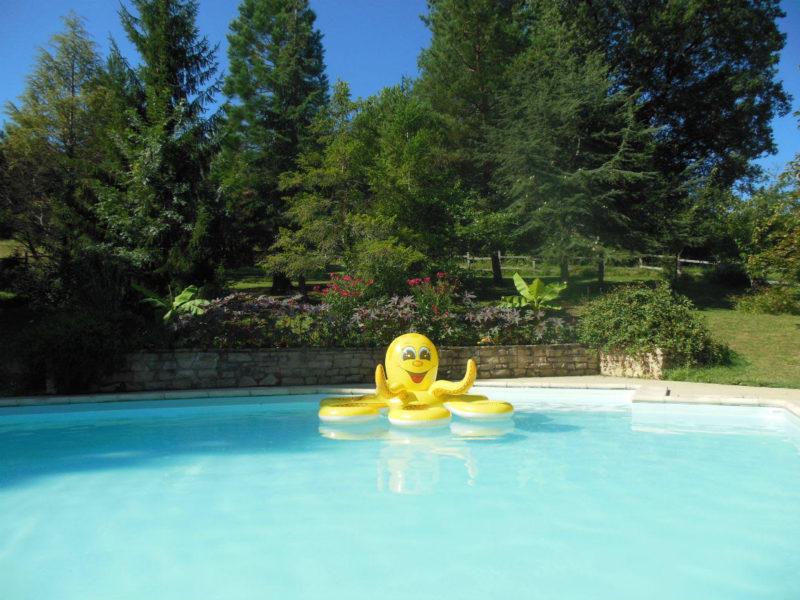 Zwembad La Douce France