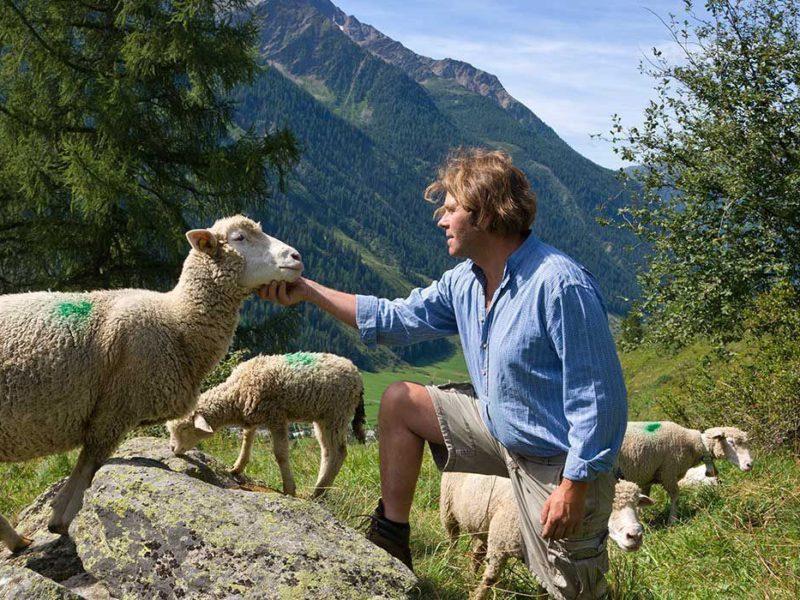 Wallis Collection, Man aanbidt schaap