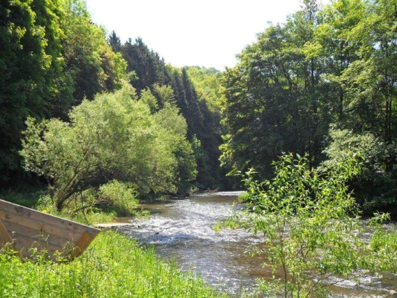 Camping in de Eifel in Duitsland Camp Kyllburg aan de rivier