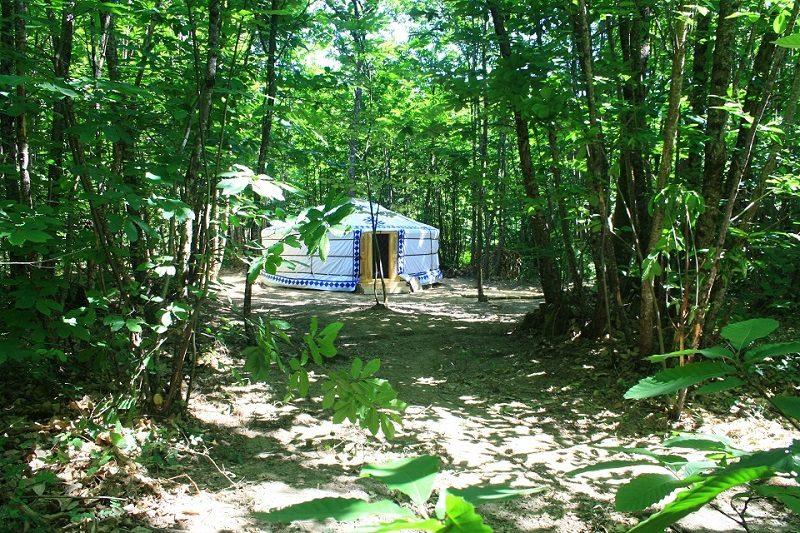 O Bois Dormant - Yurt