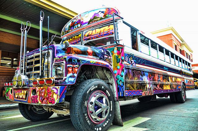 transport bus