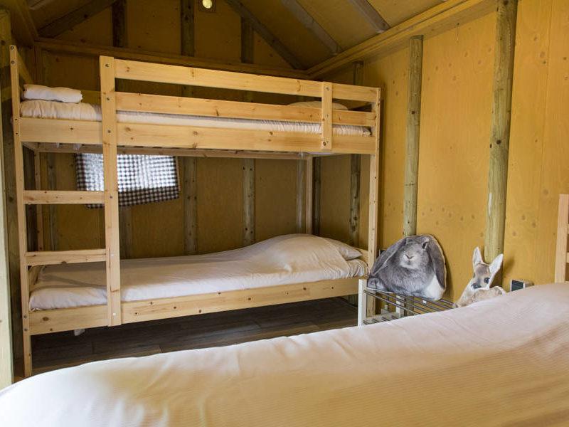 Slaapkamer boshut 4 personen - RCN de Jagerstee, Glamping.nl