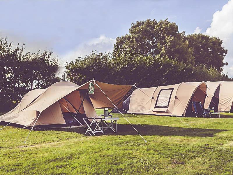 Familiecamping de Belten - Glamping - De Waard Tent