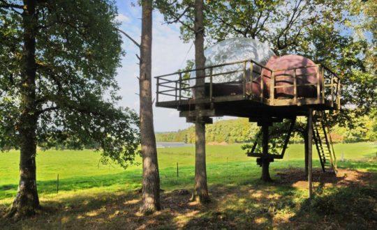 Natuurhuisje in Fisenne - Glamping.nl