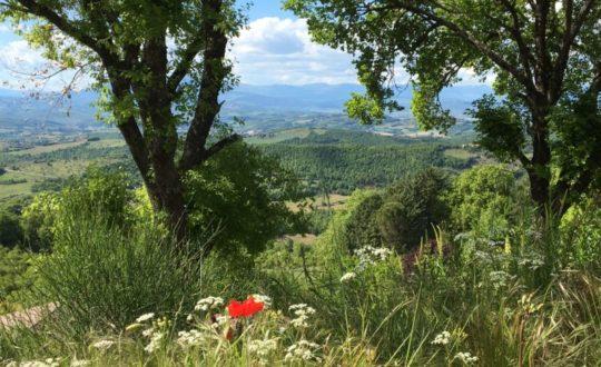 Combineer glamping en cultuur bij Luna del Monte in Umbrië