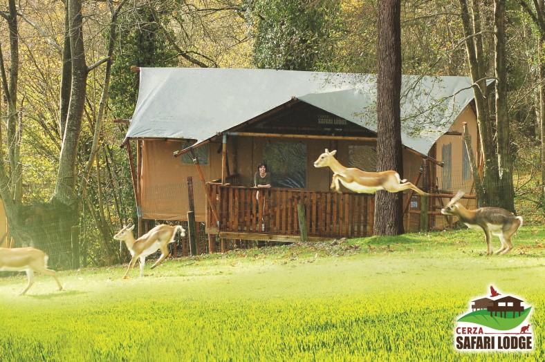cerza safari lodges