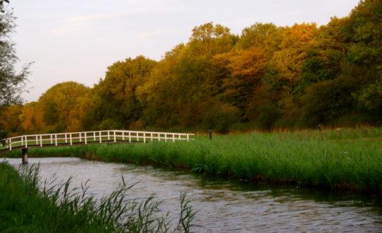 Natuur en stad bij vakantiepark Delftse Hout
