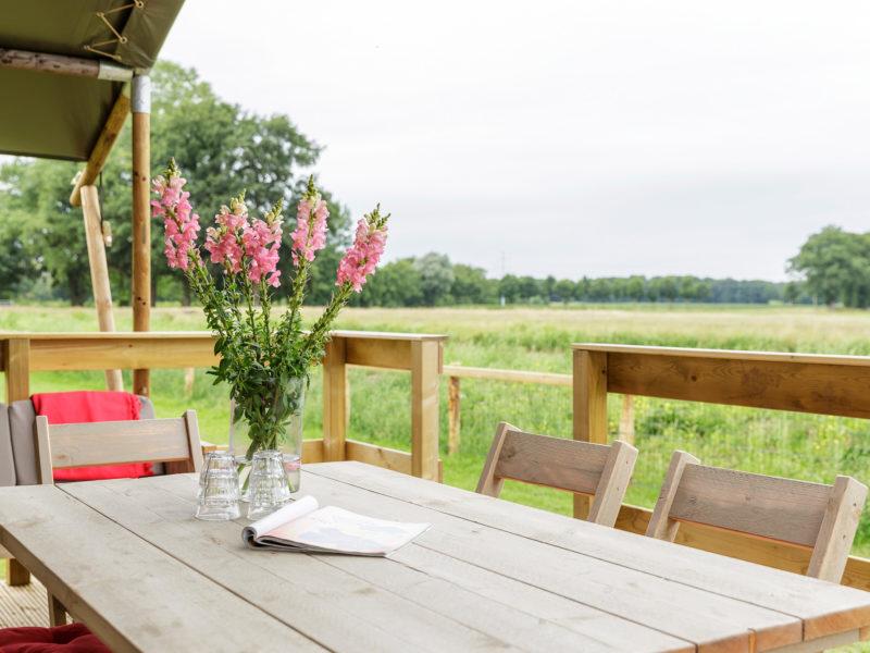 Terras lodgetent + omgeving - Vakantiepark de Twee Bruggen, glamping.nl