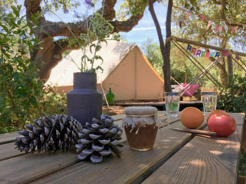 Safaritent - accommodatie, into the wild, glamping.nl