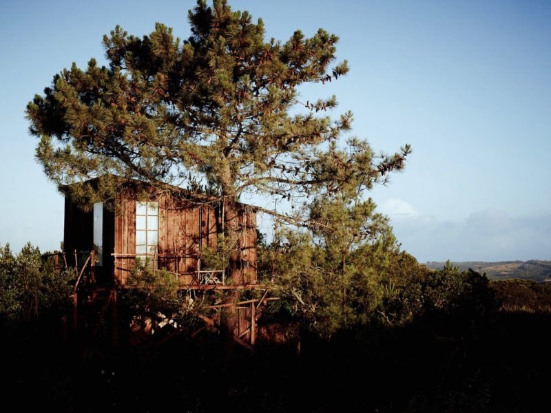 Boomhut - accommodatie, Into the wild Algarve, glamping.nl