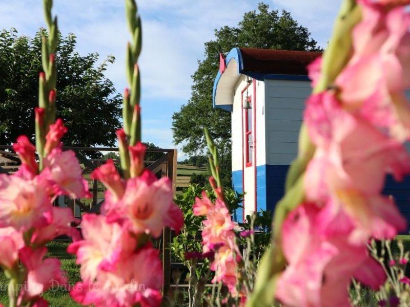 Huuraccommodatie Pipowagen - Dans le Jardin, glamping.nl
