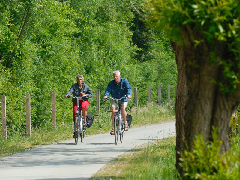 Omgeving camping fietsen - Droompark Bad Hoophuizen, glamping.nl