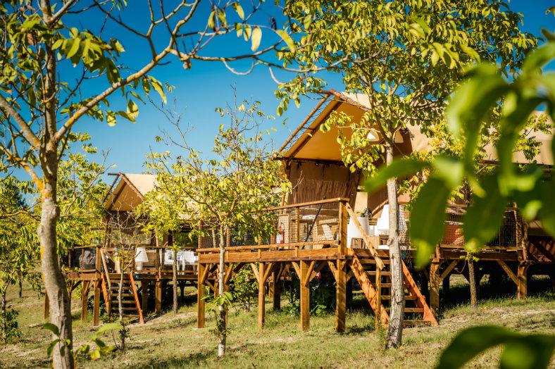 Lodge-tussen-olijfbomen-Pian-di-Boccio