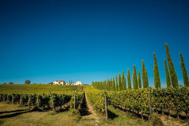 Umbrie-omgeving-Pian-di-Boccio