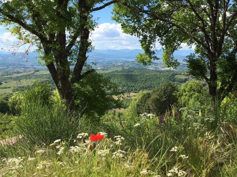 Umbrie - Luna del Monte - Glamping en cultuur