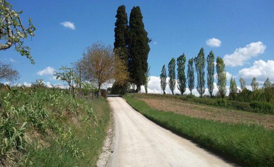 Een glampingroadtrip door Toscane en Le Marche