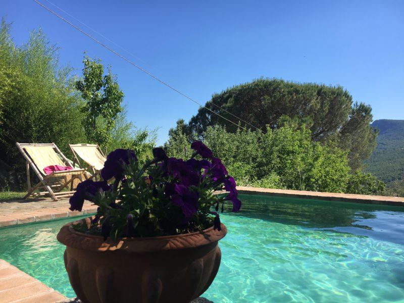zwembad - Podere di Maggio - Glamping