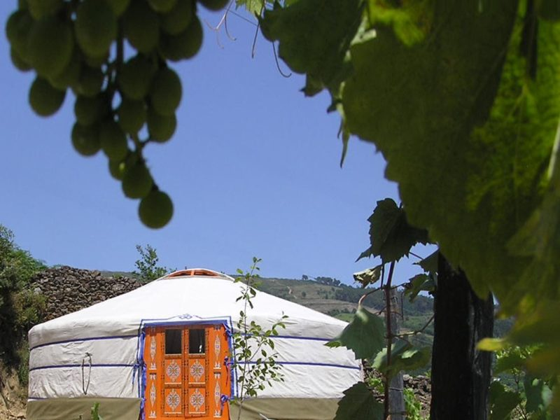 Yurt huuraccommodatie - Quinta das Corujeiras, glamping.nl