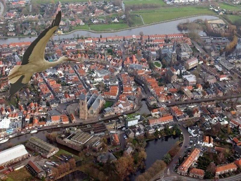 Overzicht omgeving - De Mulderije, Vodatent, Glamping.nl