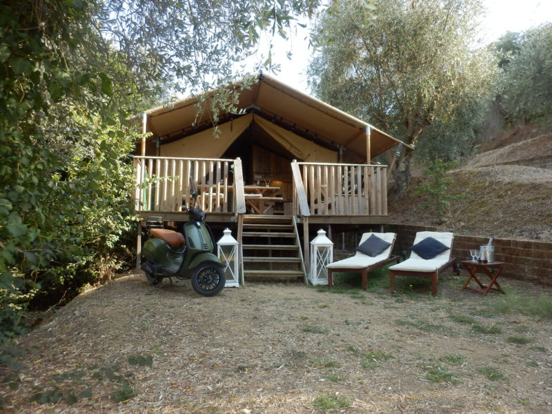 Glamping facts Safaritent populairste accommodatie