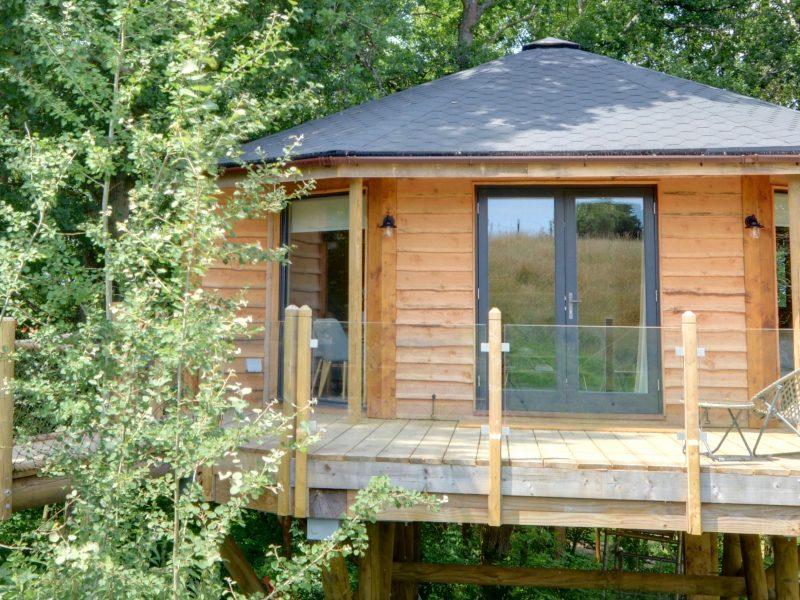 The Oakey Koakey Treehouse