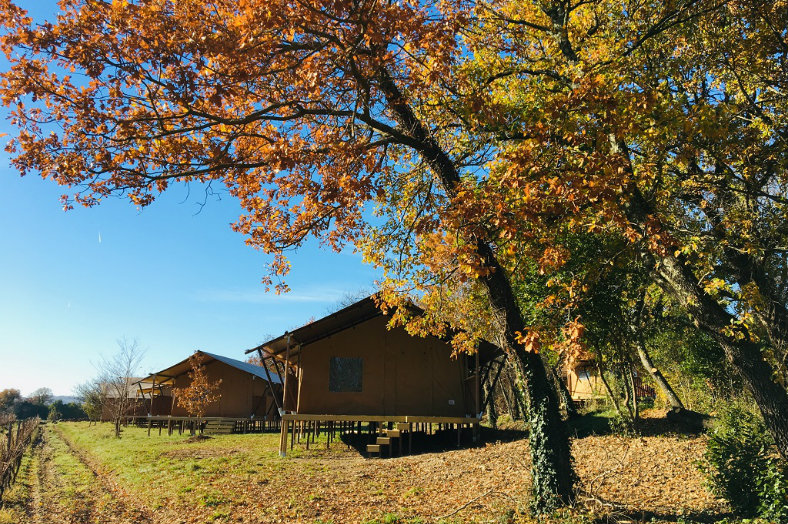 Lodge - Coucouzac - Glamping.nl
