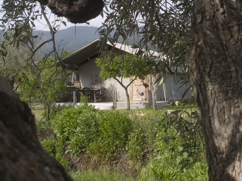 Safari Lodge - Casa del Mundo - Glamping.nl