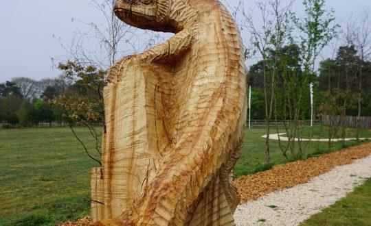 Word een met de natuur dankzij de houtsculpturen route van Resort De Wije Werelt
